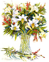 67 - White Lillies in Vase